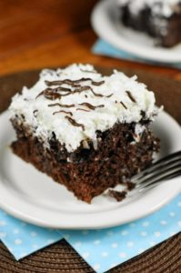 Chocolate Coconut Cake 1