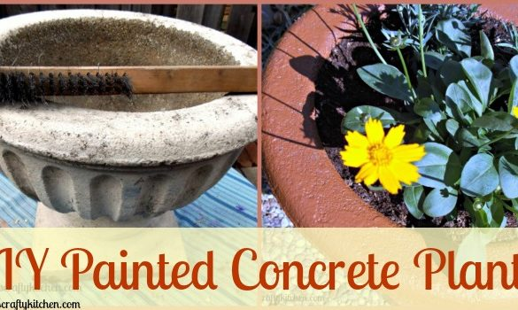DIY Painted Concrete Planter