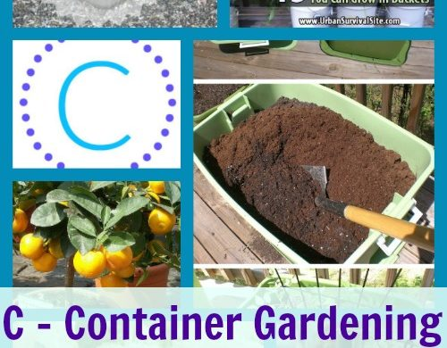 A-Z Roundup Container Gardening