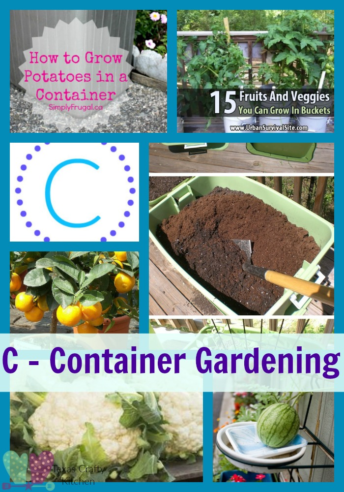 A Z Roundup Container Gardening Texas Crafty Kitchen