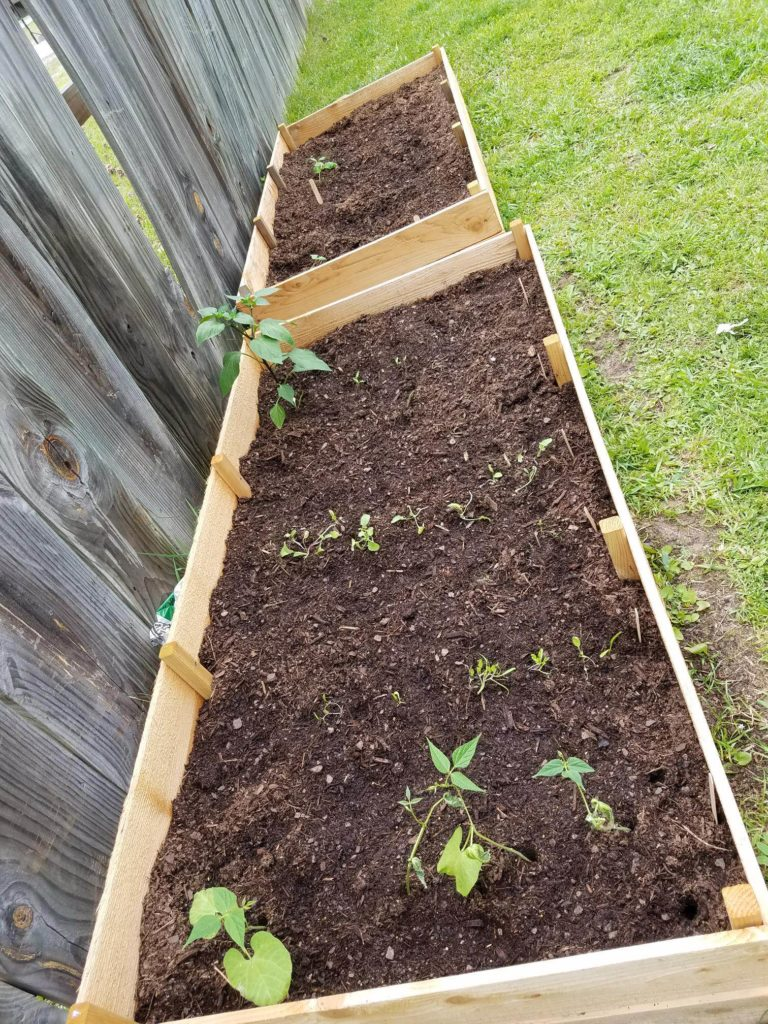 How to Start Your Raised-Bed and Container Garden. Simple and frugal way of gardening.